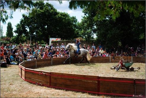 cirque equestre_07