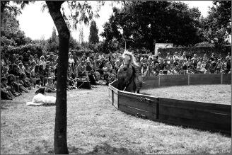cirque equestre_09 (2)